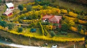 0102114, Quinta Cabeceiras de Basto